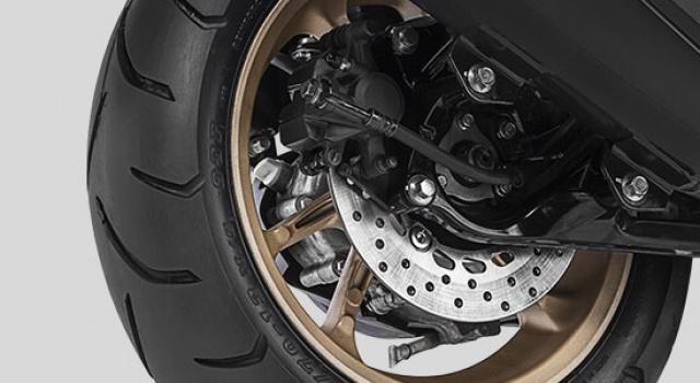 Double Disc Brake